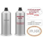 Kit en spray de Peintures  PEUGEOT